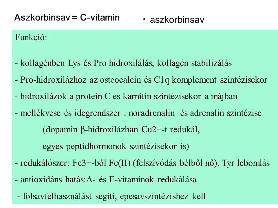 Aszkorbinsav = C-vitamin aszkorbinsav Funkció: - kollagénben Lys és Pro hidroxilálás, kollagén stabilizálás - Pro-hidroxilázhoz az osteocalcin és C1q