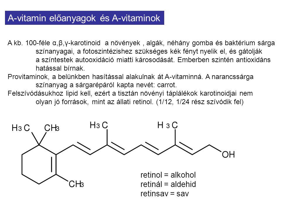 A-vitamin előanyagok és A-vitaminok A kb. 100-féle α,β,γ-karotinoid a növények, algák, néhány gomba és baktérium sárga színanyagai, a fotoszintézishez
