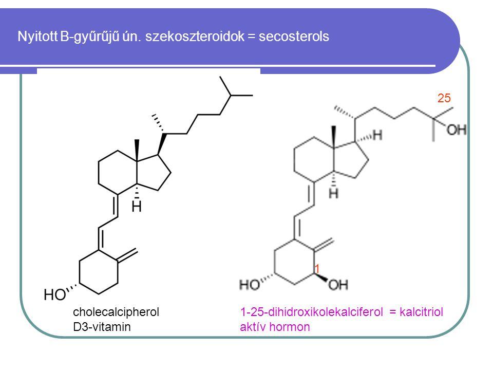 cholecalcipherol D3-vitamin 1-25-dihidroxikolekalciferol = kalcitriol aktív hormon 1 25 Nyitott B-gyűrűjű ún. szekoszteroidok = secosterols