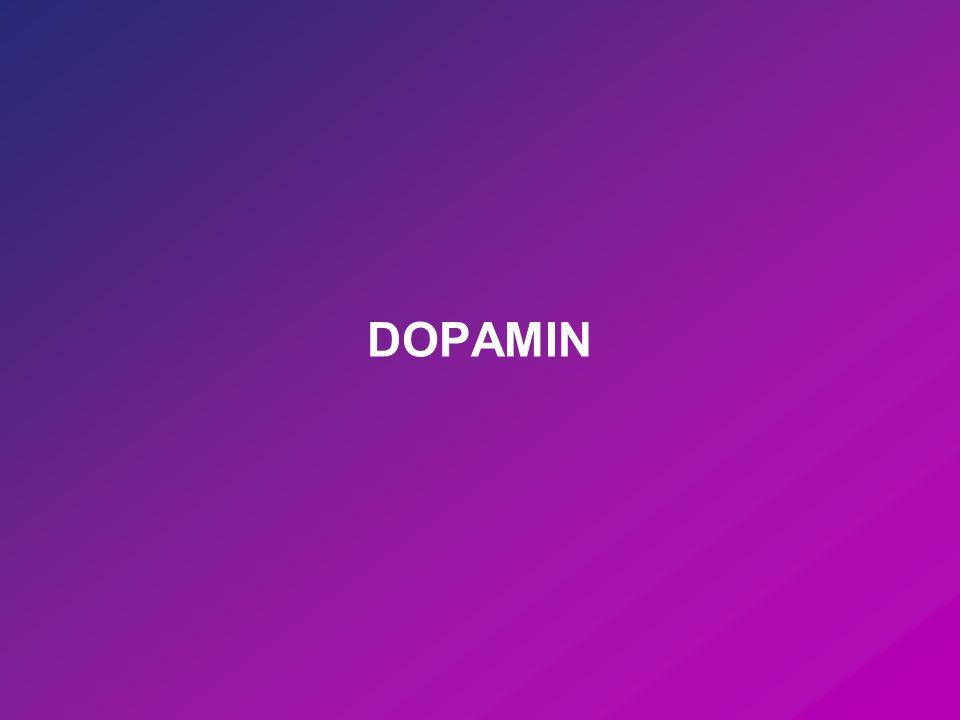 A dopaminerg neurotranszmisszio egyszeru semaja
