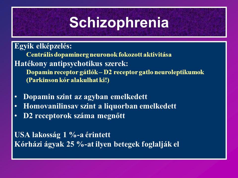 Schizophrenia Egyik elképzelés: Centrális dopaminerg neuronok fokozott aktivitása Hatékony antipsychotikus szerek: Dopamin receptor gátlók – D2 recept