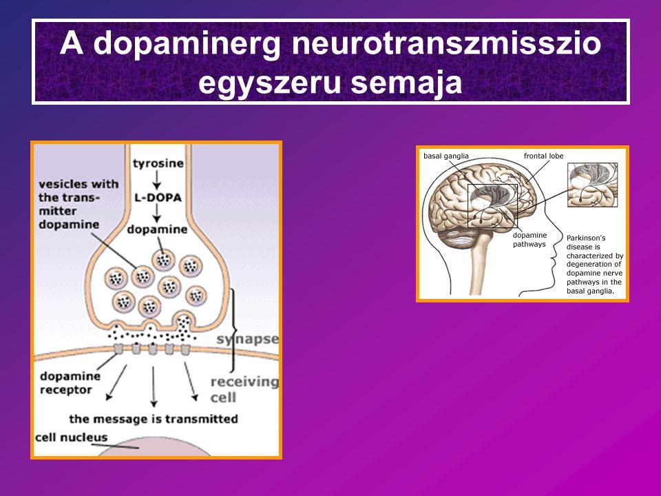 A Parkinson kor terapiaja *L-DOPA (levodopa) Periferiás DOPA- dekarboxiláz aktivitas  1 % kerül az agyba Kombináció:Carbidopa (DOPA-dekarboxiláz gátló, agy-vér gáton nem jut át, csak a periferian gatol) * Dopamin receptor agonisták (schizophrenia!)