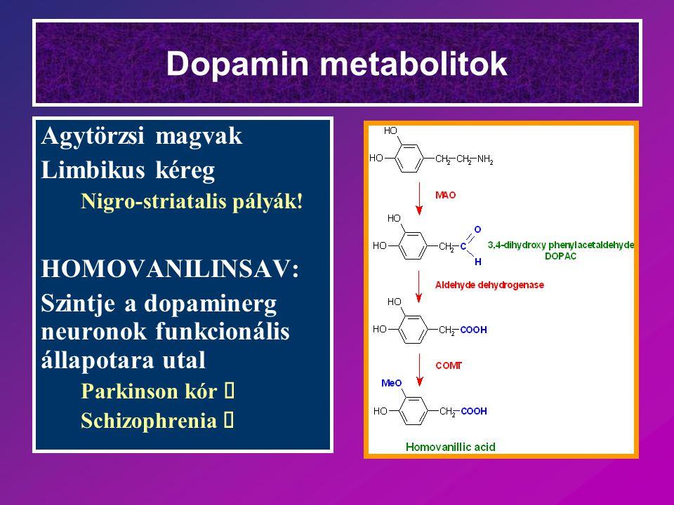 Dopamin metabolitok Agytörzsi magvak Limbikus kéreg Nigro-striatalis pályák! HOMOVANILINSAV: Szintje a dopaminerg neuronok funkcionális állapotara uta