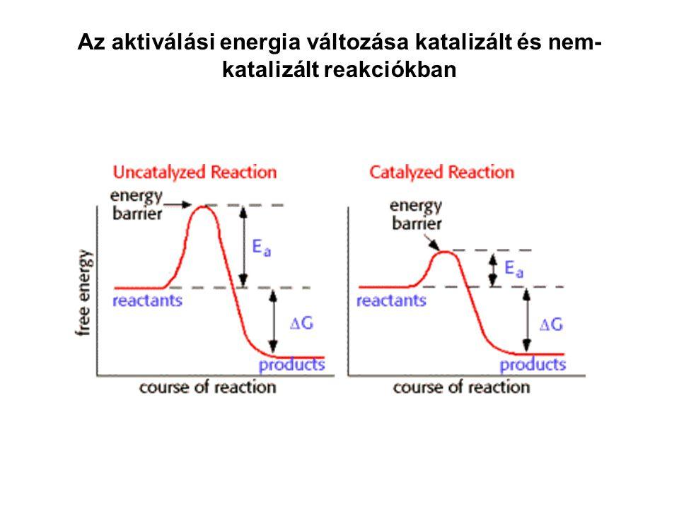 Az aktiválási energia változása katalizált és nem- katalizált reakciókban
