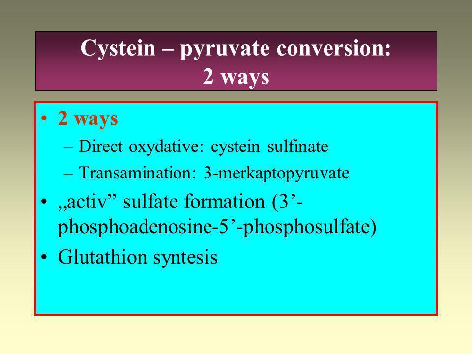 Cystin – cystein conversion
