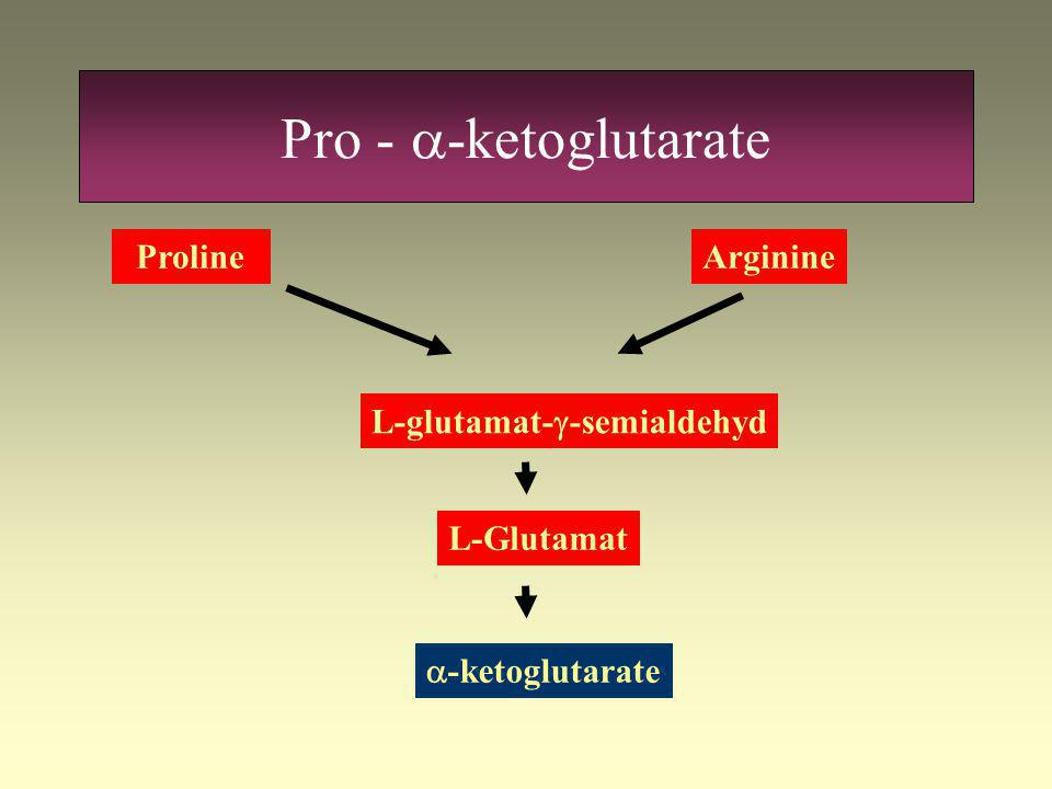 Gln & glu  -ketoglutarate Glutaminase Transaminase