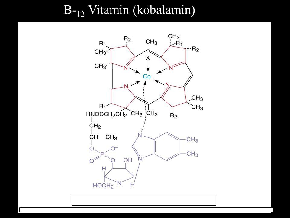 B- 12 Vitamin (kobalamin)