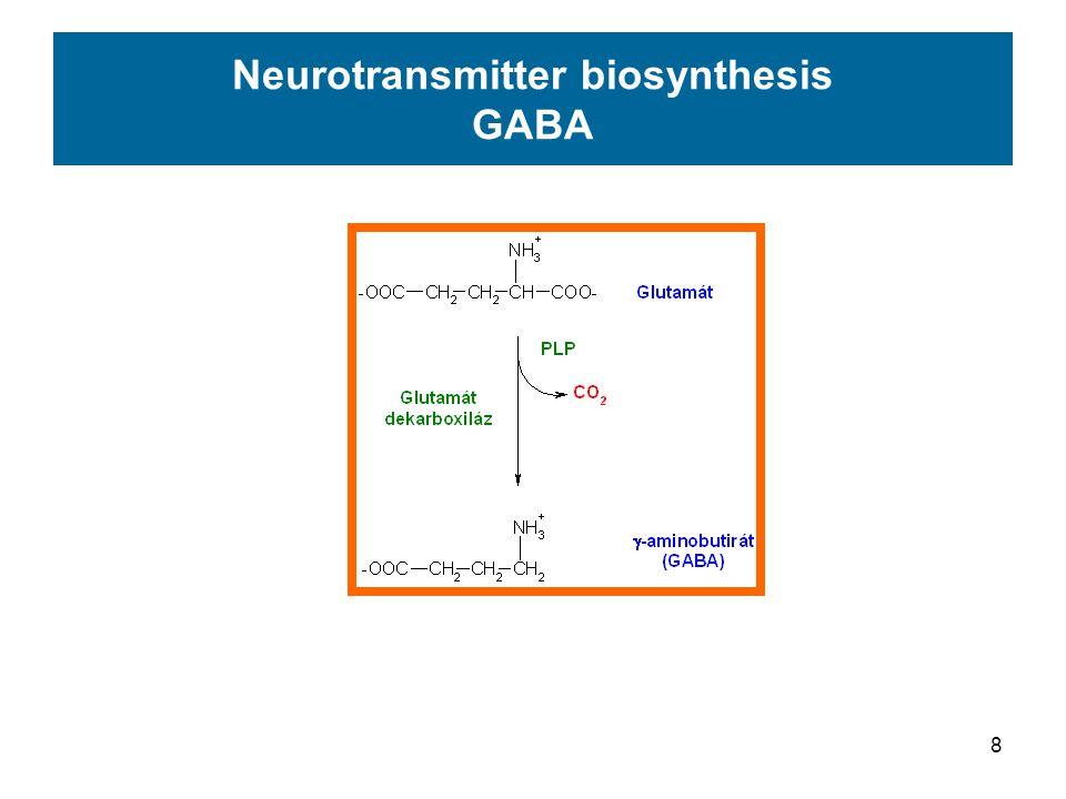 9  -Aminobutirate (GABA) GABA-receptors Cl - channel Cerebellum – inhibition of Purkinje cells GABA-receptors: neutotransmitter regulated ionchannel