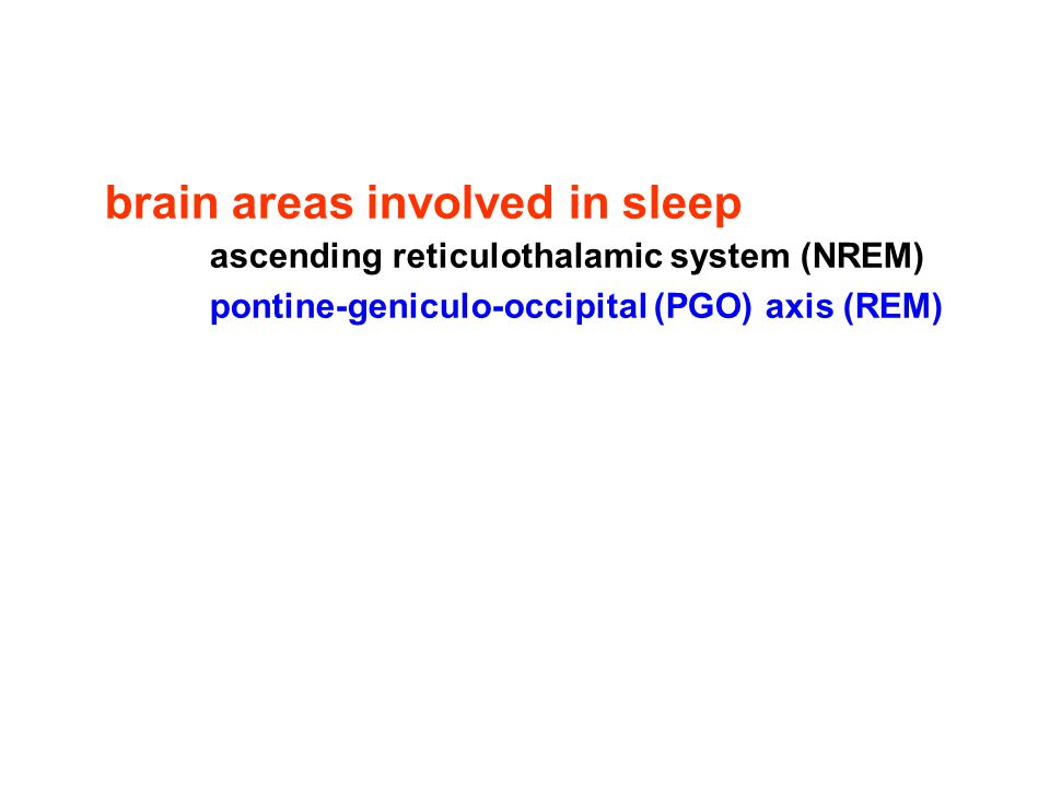 brain areas involved in sleep ascending reticulothalamic system (NREM) pontine-geniculo-occipital (PGO) axis (REM)