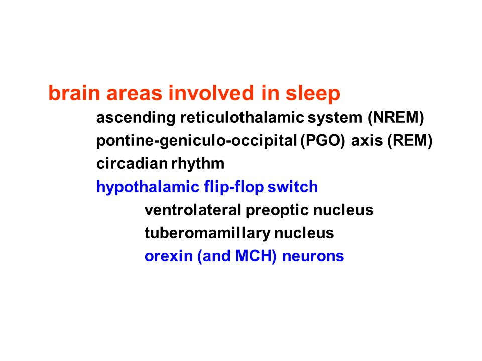 brain areas involved in sleep ascending reticulothalamic system (NREM) pontine-geniculo-occipital (PGO) axis (REM) circadian rhythm hypothalamic flip-flop switch ventrolateral preoptic nucleus tuberomamillary nucleus orexin (and MCH) neurons