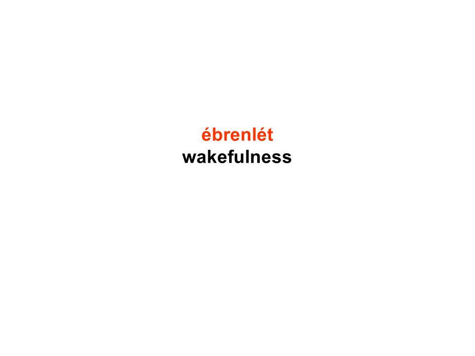 ébrenlét wakefulness