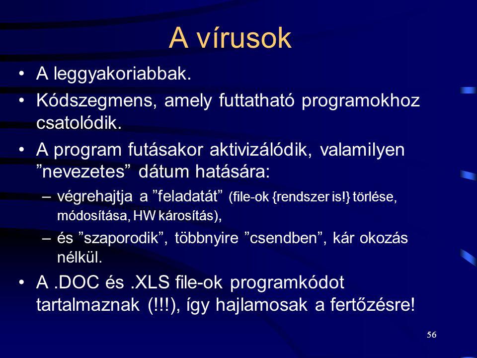 56 A vírusok A leggyakoriabbak.Kódszegmens, amely futtatható programokhoz csatolódik.