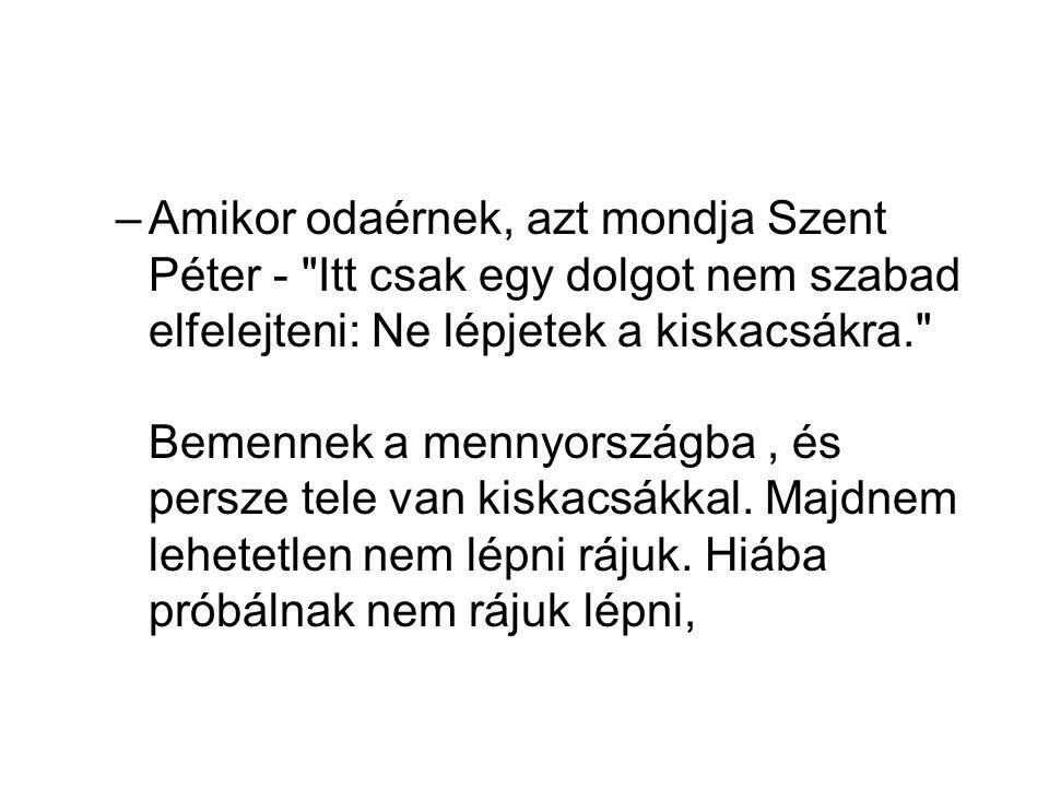 –Amikor odaérnek, azt mondja Szent Péter - Itt csak egy dolgot nem szabad elfelejteni: Ne lépjetek a kiskacsákra. Bemennek a mennyországba, és persze tele van kiskacsákkal.