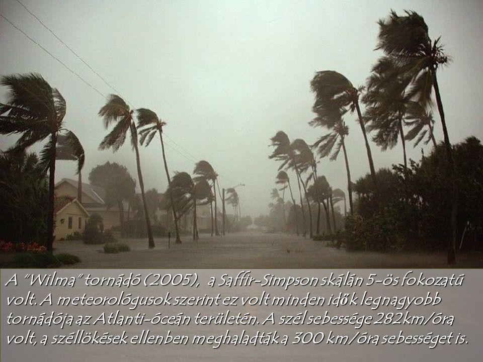 Tsunami – japánul nagy hullám amely eléri a kiköt ő t .