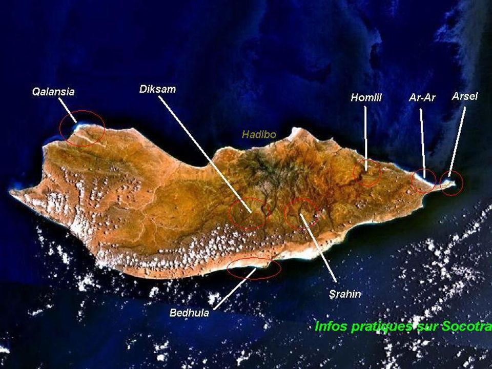 SOCOTRA Socotra az Indiai Óceán egyik szigete az Adeni Öböl közelében, Jemen közigazgatási területe. Nagysága: 3.25 km2. Kb. 70 ezer ember lakja. A sz