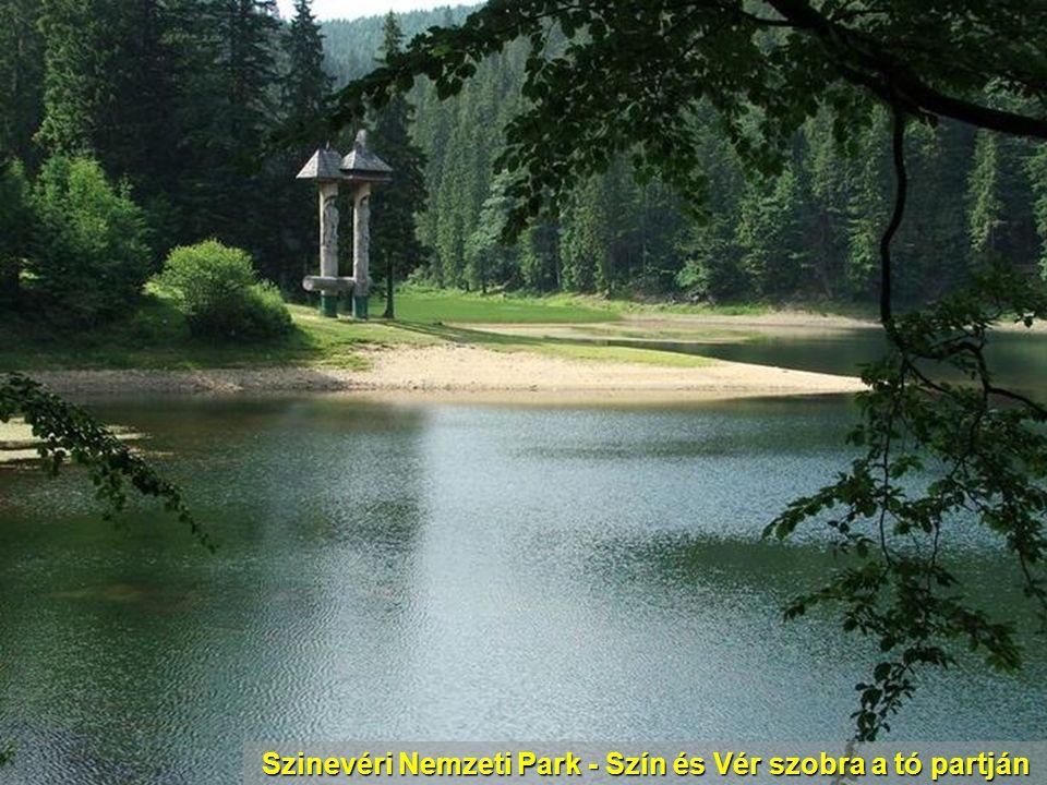 Csetfalva – Az ökumenikus templom