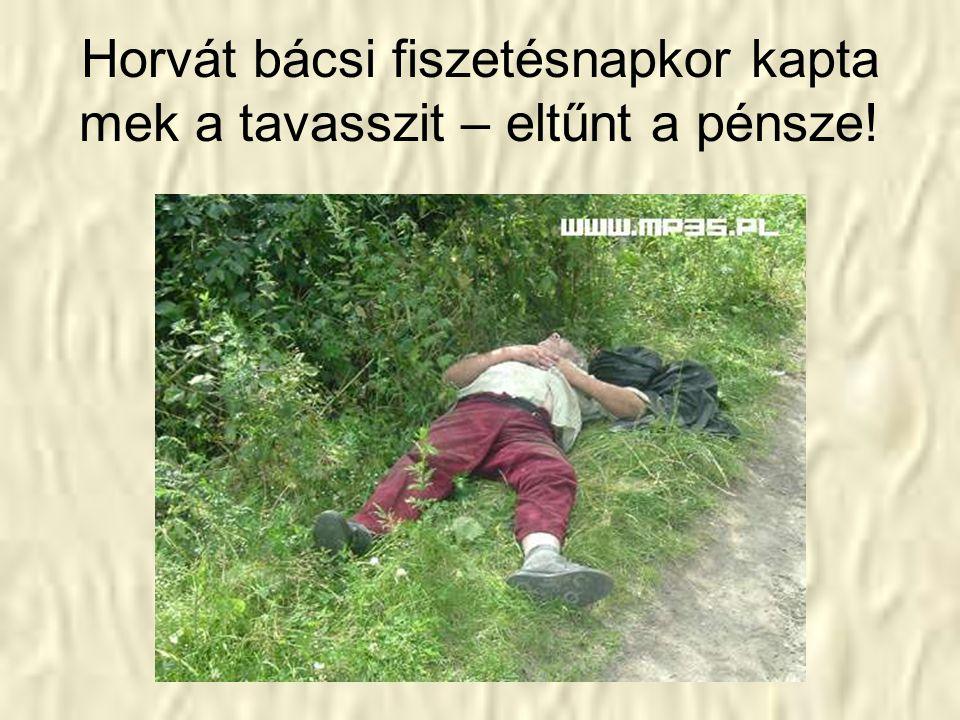 Kanalas Pali bácsijék kimentek kapálni de nem jutotak el a szölöjig!