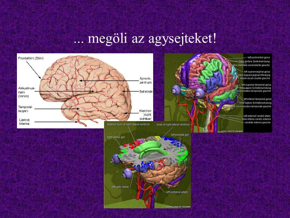 ... megöli az agysejteket!