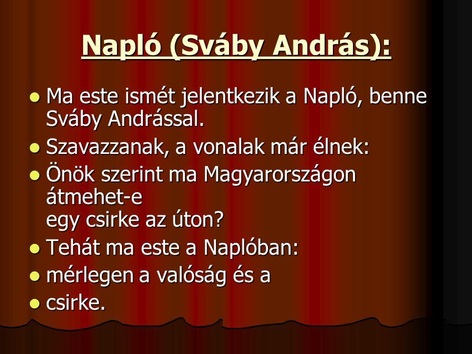 Napló (Sváby András): Ma este ismét jelentkezik a Napló, benne Sváby Andrással.