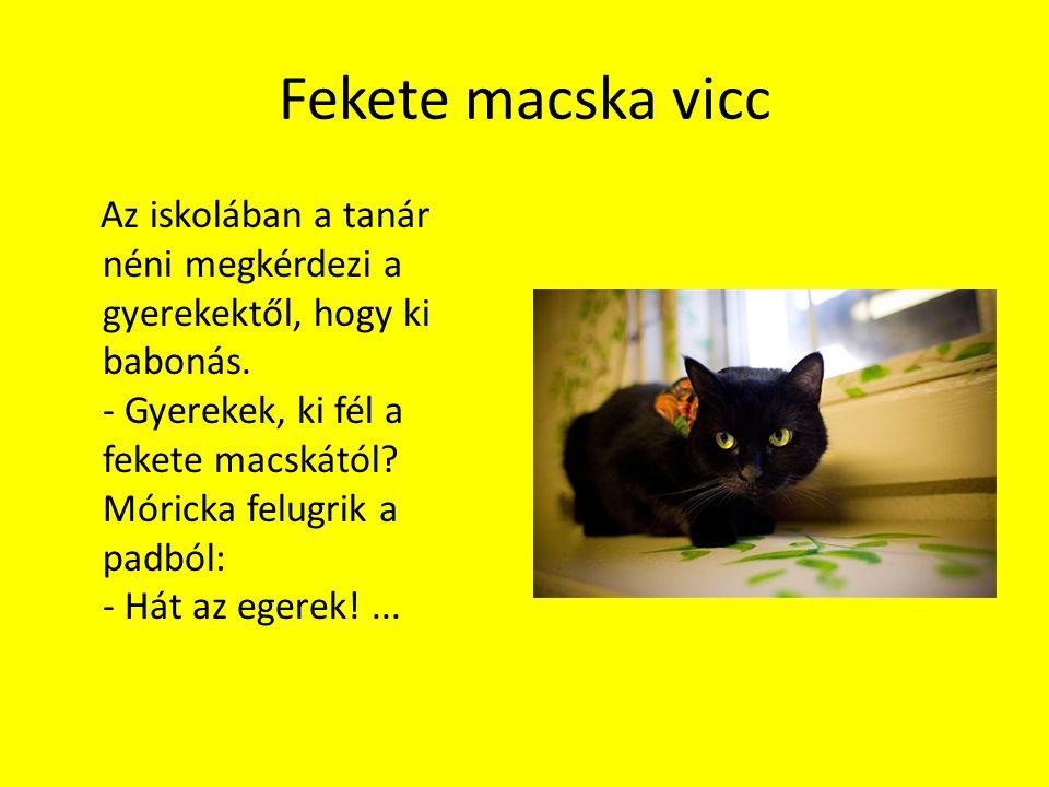 Fekete macska vicc Az iskolában a tanár néni megkérdezi a gyerekektől, hogy ki babonás. - Gyerekek, ki fél a fekete macskától? Móricka felugrik a padb