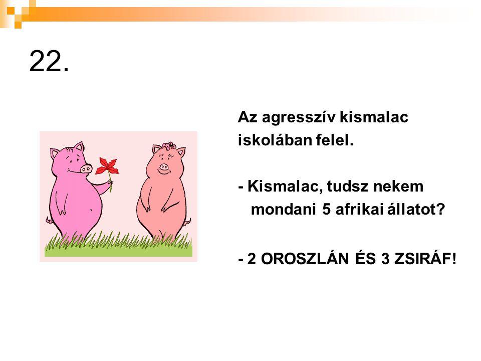 22.Az agresszív kismalac iskolában felel. - Kismalac, tudsz nekem mondani 5 afrikai állatot.