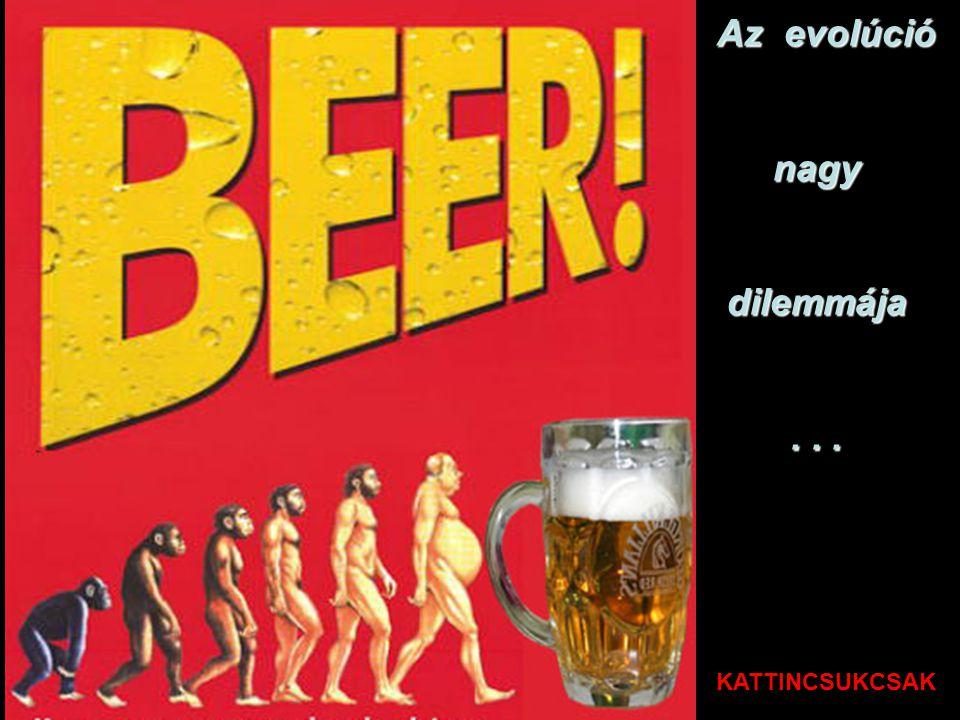 17. Több sör együtt sem beszél hülyeséget. Egy pont a SÖRNEK Egy pont a SÖRNEK