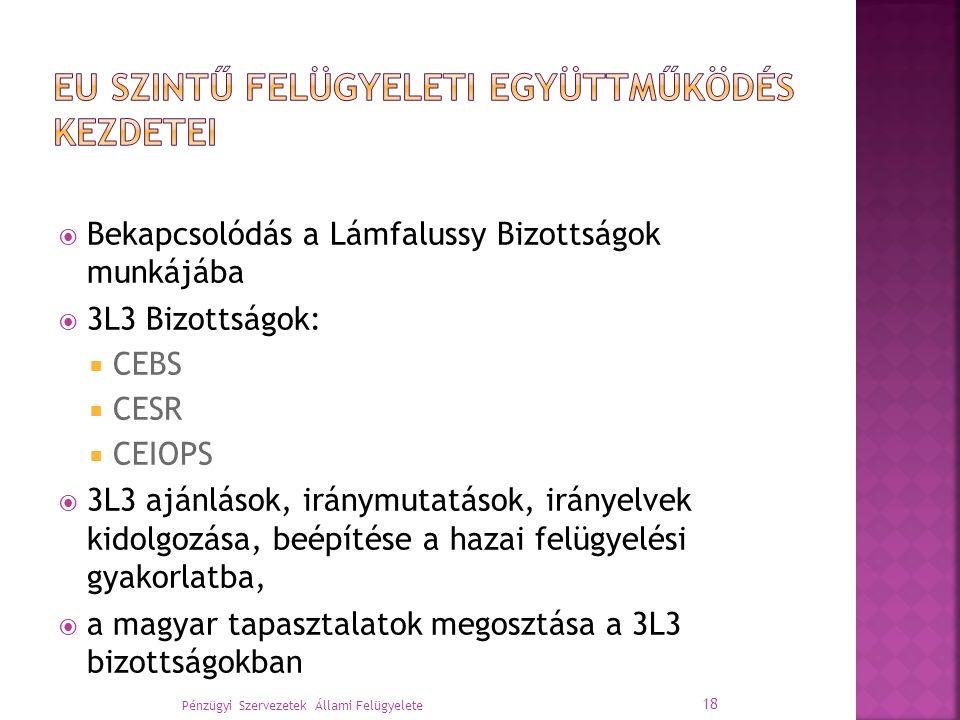  Bekapcsolódás a Lámfalussy Bizottságok munkájába  3L3 Bizottságok:  CEBS  CESR  CEIOPS  3L3 ajánlások, iránymutatások, irányelvek kidolgozása, beépítése a hazai felügyelési gyakorlatba,  a magyar tapasztalatok megosztása a 3L3 bizottságokban Pénzügyi Szervezetek Állami Felügyelete 18