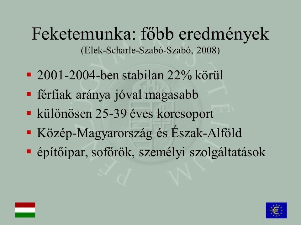 12 Feketemunka: főbb eredmények (Elek-Scharle-Szabó-Szabó, 2008)  2001-2004-ben stabilan 22% körül  férfiak aránya jóval magasabb  különösen 25-39