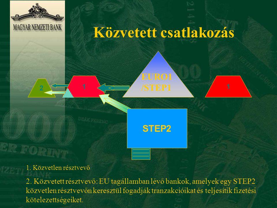 Csatlakozás belépési ponton keresztül Belépési pontként működő közvetlen tagok 3 3 3 köteg STEP2 1 1 1 EURO1/ STEP1 1.