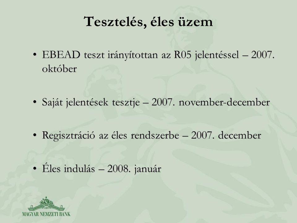 Tesztelés, éles üzem EBEAD teszt irányítottan az R05 jelentéssel – 2007. októberEBEAD teszt irányítottan az R05 jelentéssel – 2007. október Saját jele