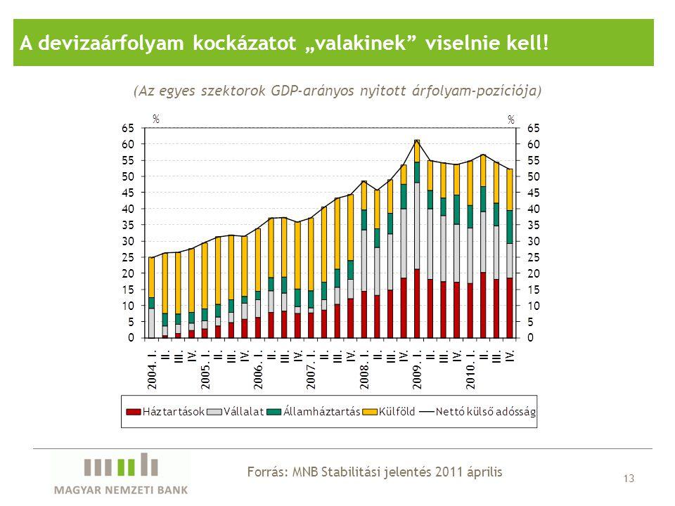 """13 (Az egyes szektorok GDP-arányos nyitott árfolyam-pozíciója) A devizaárfolyam kockázatot """"valakinek"""" viselnie kell! Forrás: MNB Stabilitási jelentés"""