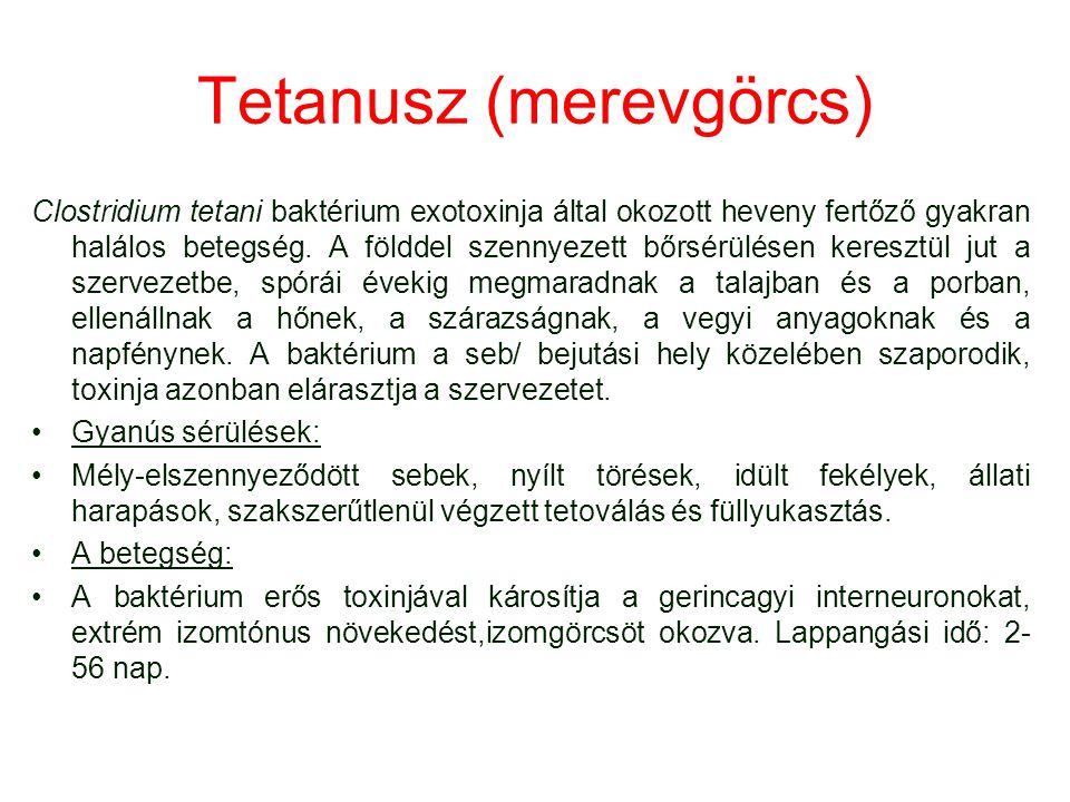 Tetanusz (merevgörcs) Clostridium tetani baktérium exotoxinja által okozott heveny fertőző gyakran halálos betegség. A földdel szennyezett bőrsérülése