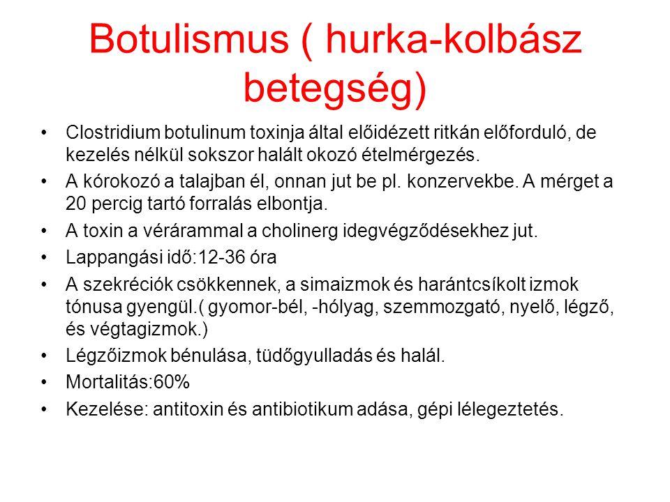 Botulismus ( hurka-kolbász betegség) Clostridium botulinum toxinja által előidézett ritkán előforduló, de kezelés nélkül sokszor halált okozó ételmérg