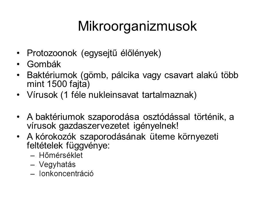 Mikroorganizmusok Protozoonok (egysejtű élőlények) Gombák Baktériumok (gömb, pálcika vagy csavart alakú több mint 1500 fajta) Vírusok (1 féle nukleins