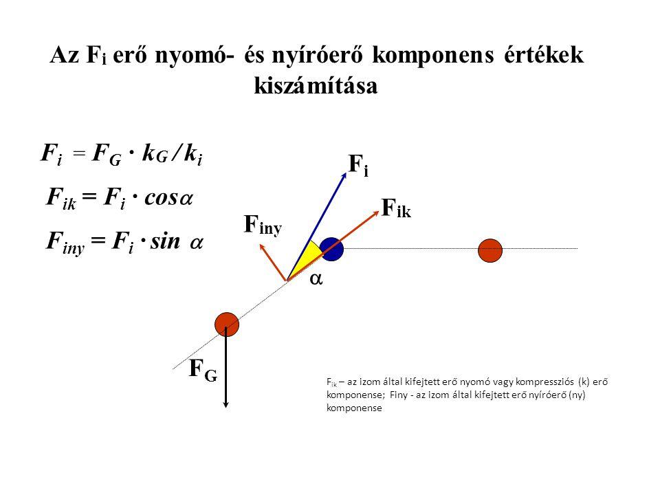 Az izomerő (F m ) kiszámítása FGFG kGkG FiFi kiki F G · l G = F i · k i F i = F G · k G / k i