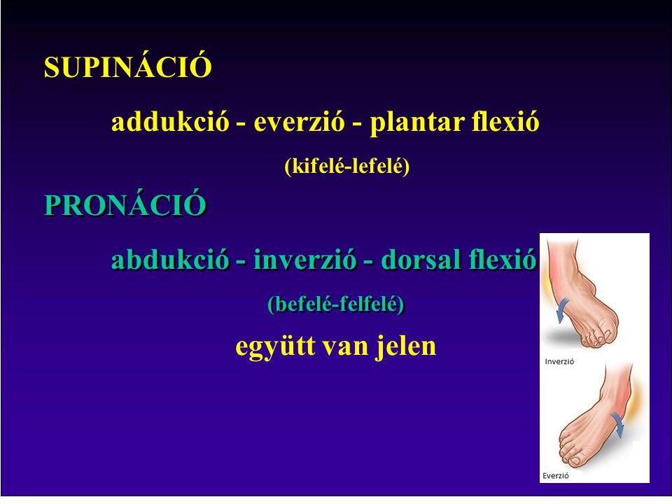 SUPINÁCIÓ addukció - everzió - plantar flexió (kifelé-lefelé) PRONÁCIÓ abdukció - inverzió - dorsal flexió (befelé-felfelé) PRONÁCIÓ abdukció - inverzió - dorsal flexió (befelé-felfelé) együtt van jelen