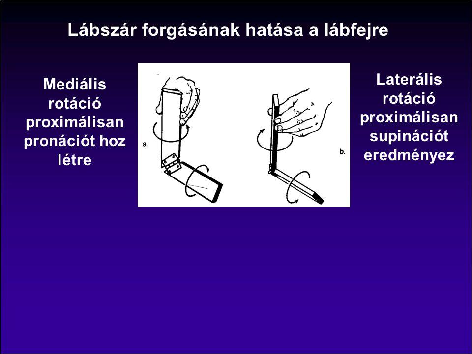Lábszár forgásának hatása a lábfejre Mediális rotáció proximálisan pronációt hoz létre Laterális rotáció proximálisan supinációt eredményez