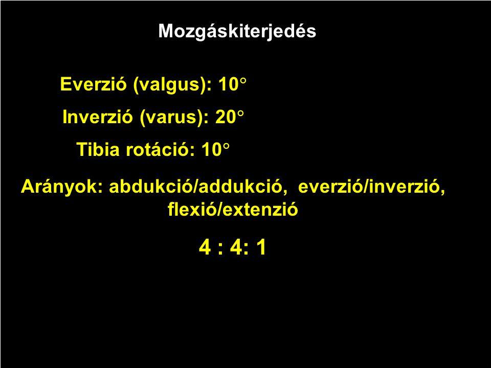 Mozgáskiterjedés Everzió (valgus): 10  Inverzió (varus): 20  Tibia rotáció: 10  Arányok: abdukció/addukció, everzió/inverzió, flexió/extenzió 4 : 4: 1