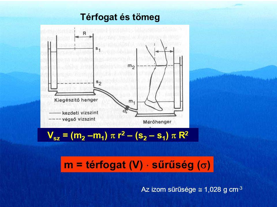 G k – a kar súlyereje l p – a palló hossza F r1 – a test súlyereje által létrehozott reakció erő mélytartásban F r2 – a test súlyereje által létrehozo