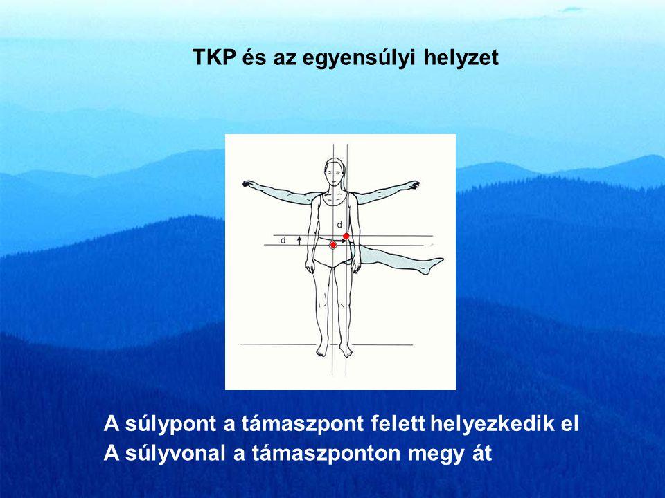 TÖMEGKÖZÉPPONT (súlypont) Helye nem állandó a testben A testen kívül is elhelyezkedhet