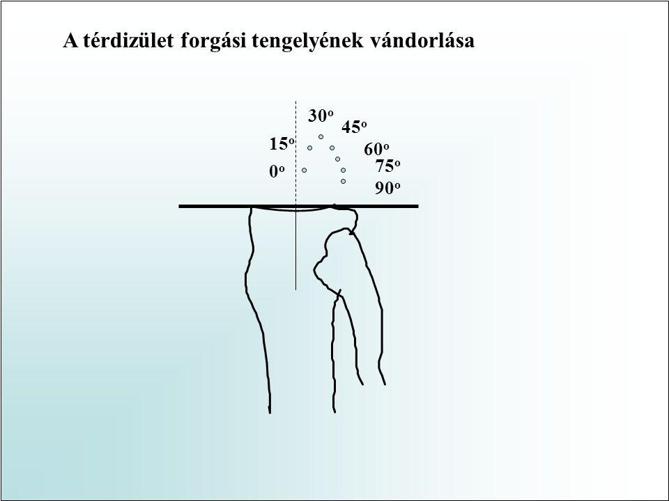 A nyomóerő eloszlása az izületi felszínen Fc = F / A 2007.05.07.