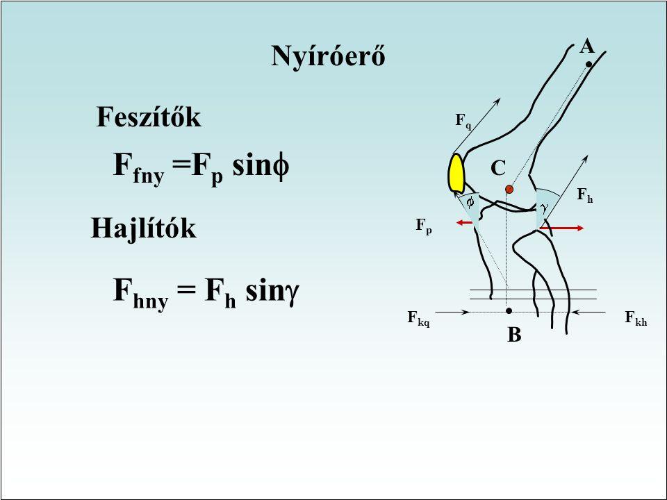 Nyomóerő az izületi szög függvényében