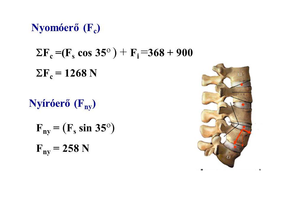 li li = 0.05 m Fs Fs = 450 N ls ls = 0.1 m F i = 900 N Az izom által kifejtett erő nagysága 1350 N 4500 N