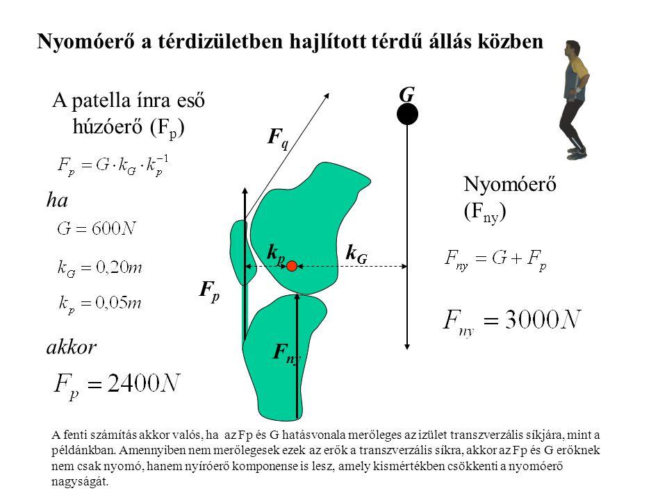 Fp kp = G k G Fp = G k G / kp F p = 1200 N ha k G / k p = 2