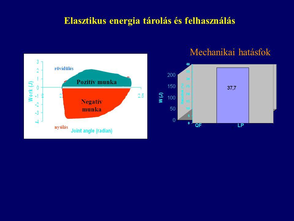 Nyomaték-idő EMG, Vastus lateralis M ecc IC ECCC