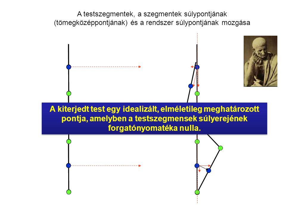 A testszegmentek, a szegmentek súlypontjának (tömegközéppontjának) és a rendszer súlypontjának mozgása A kiterjedt test egy idealizált, elméletileg meghatározott pontja, amelyben a testszegmensek súlyerejének forgatónyomatéka nulla.
