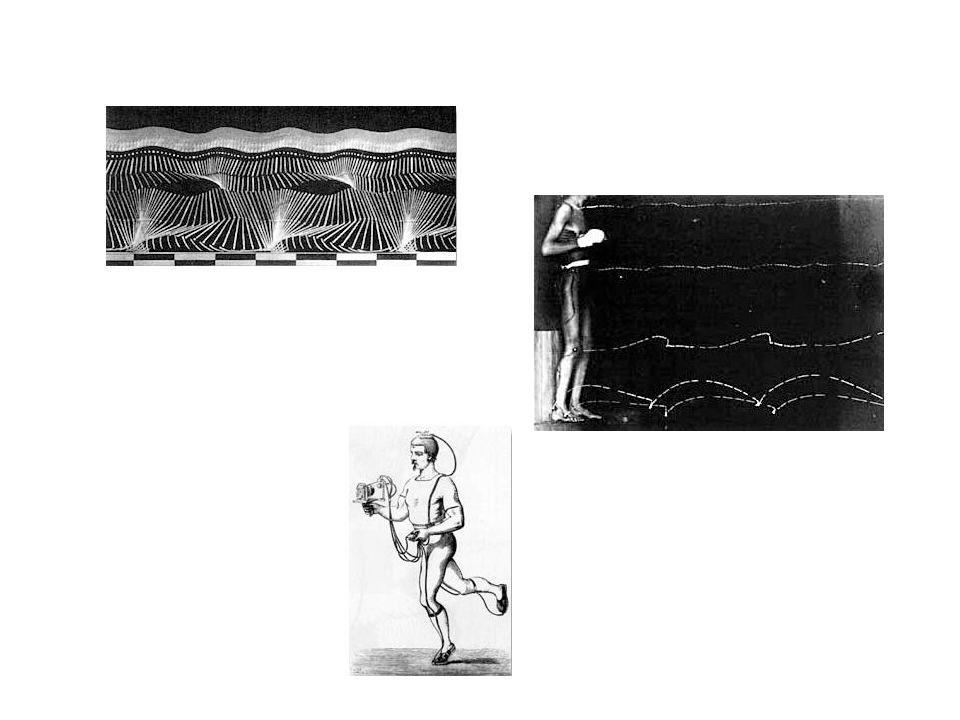A járáselemzés mozgáselemzés részén túlmenõen foglalkozott a talp-talaj kontaktusban fellépõ erõk mérésével is, amihez erõmérõvel ellátott cipõtalpat