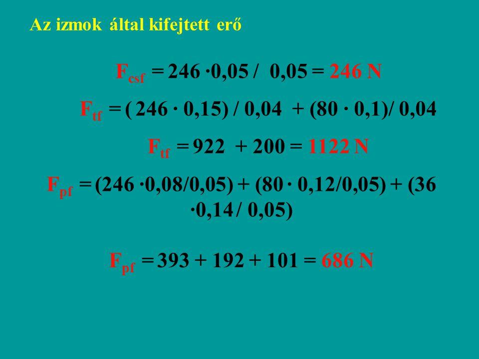 F csf = 246 ·0,05 / 0,05 = 246 N F tf = ( 246 · 0,15) / 0,04 + (80 · 0,1)/ 0,04 F tf = 922 + 200 = 1122 N F pf = (246 ·0,08/0,05) + (80 · 0,12/0,05) + (36 ·0,14 / 0,05) F pf = 393 + 192 + 101 = 686 N Az izmok által kifejtett erő