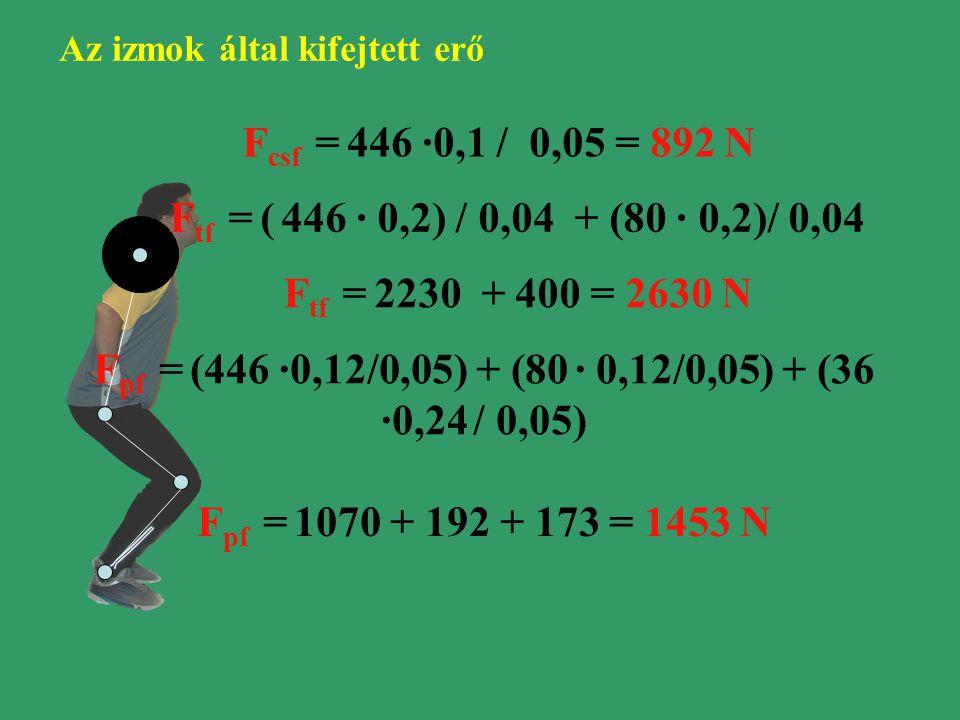 F csf = 446 ·0,1 / 0,05 = 892 N F tf = ( 446 · 0,2) / 0,04 + (80 · 0,2)/ 0,04 F tf = 2230 + 400 = 2630 N F pf = (446 ·0,12/0,05) + (80 · 0,12/0,05) + (36 ·0,24 / 0,05) F pf = 1070 + 192 + 173 = 1453 N Az izmok által kifejtett erő