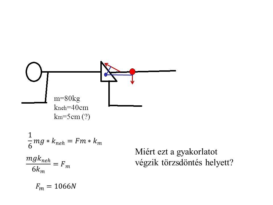 FmFm k neh kmkm Fr m=80kg m s =20kg k neh =35cm k s =50cm k m =5cm (?) F súlyzó ksks α=30˚ Fr=3765N m súlyzó =20kg dF r =1664N